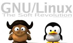 OTHER-GNU-Linux