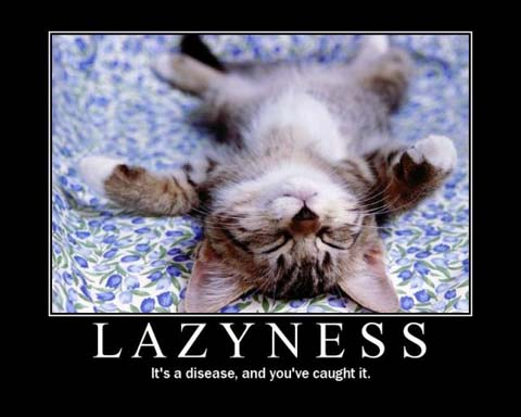 lazyness-cat