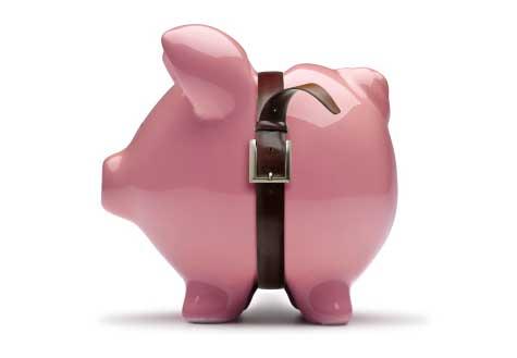 Frugal-Pig